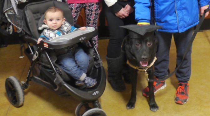 Dog Training Work Pays Off