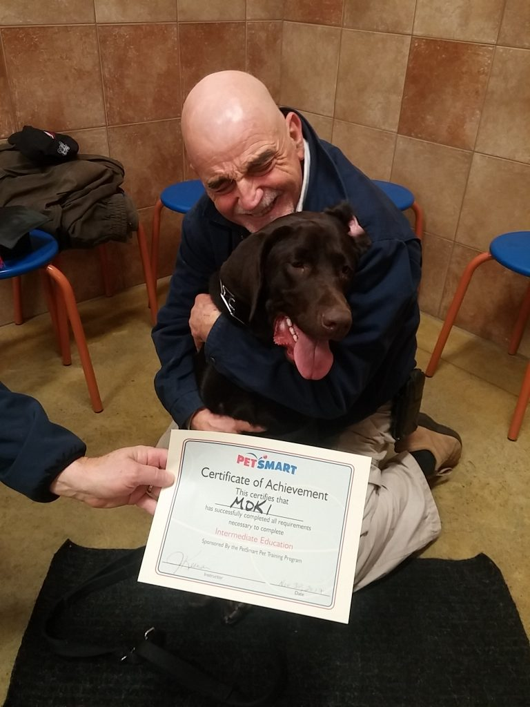 dog training graduate intermediate