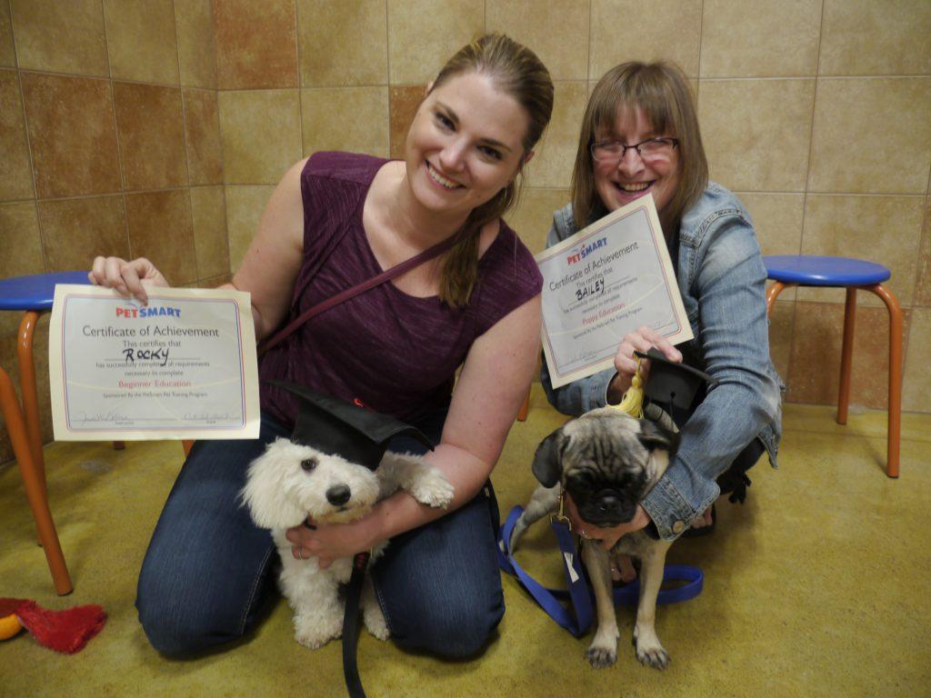 puppy dog training graduates