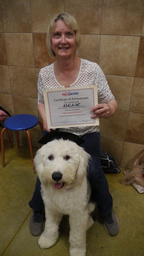 dog training deaf dog