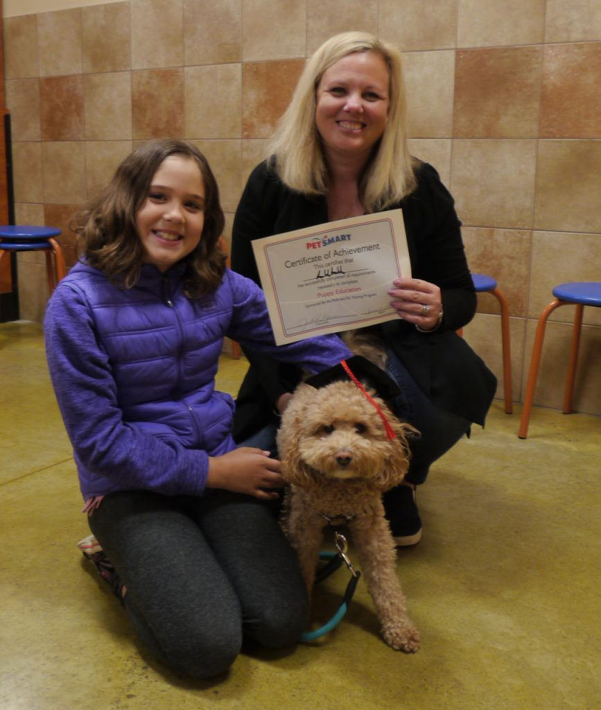 dog training ganaraskan