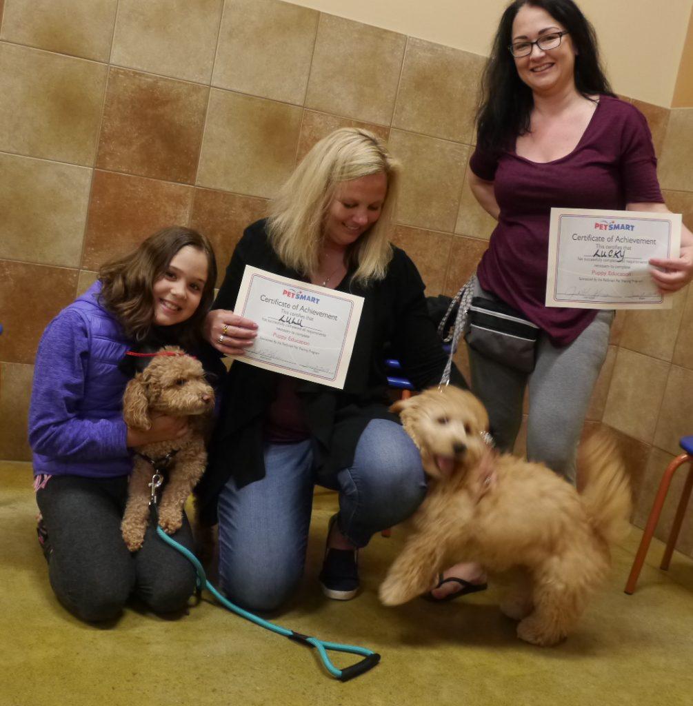 dog training puppy class june 2019