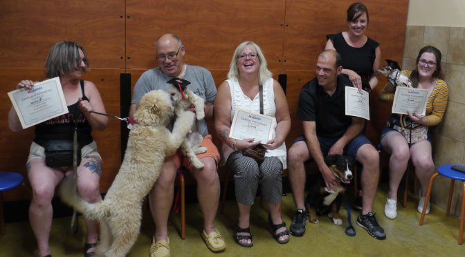 summer dog training graduates