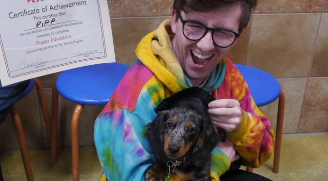 Dog Training Grads Wrap Up 2019