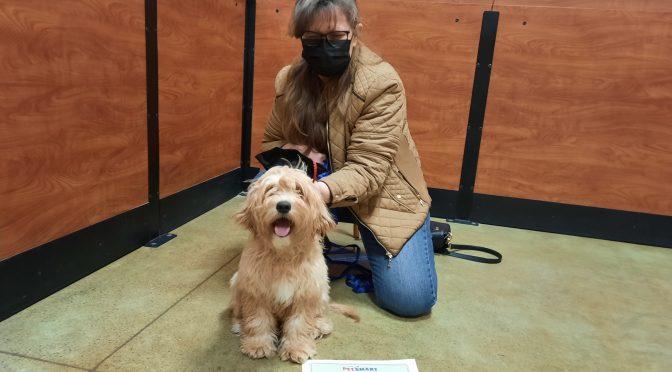 Dog Training Graduates, March 2021