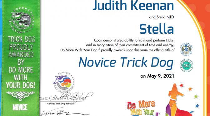 Novice Master Dog Trick Title, Stella